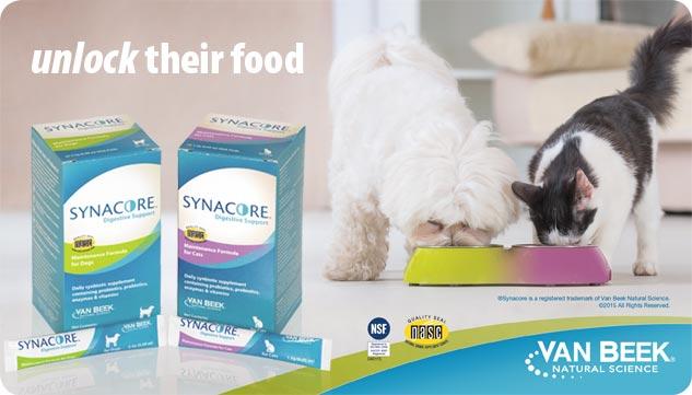 synacoreboxes