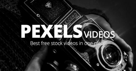 pexels-videos-promo-643f71e26c8a6a56c37f8b47d3b1058e4c96441fea7fc8b2dc4ad5da23919f5d.png