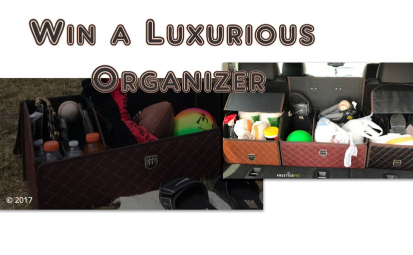 Win a Free Luxurious Leather Organizer!