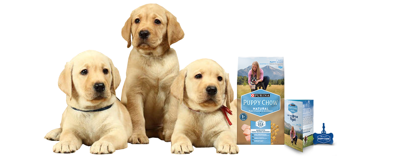 Free Puppy Chow Kit | Free Puppy Chow, Poop Bags, & Coupons