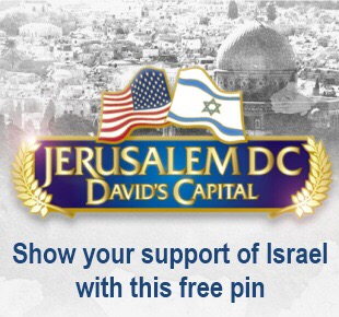 Free Support Israel Pen